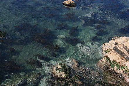 Sea01_2